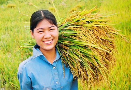 Nhiều quy định bất hợp lý về điều kiện xuất khẩu gạo đã được bãi bỏ. - Ảnh minh họa